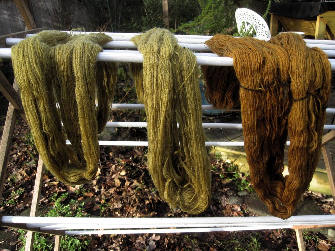 Bobbie's Mushroom dye experiments